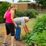 Farmers Branch Community Garden at Chapel Hill UMC